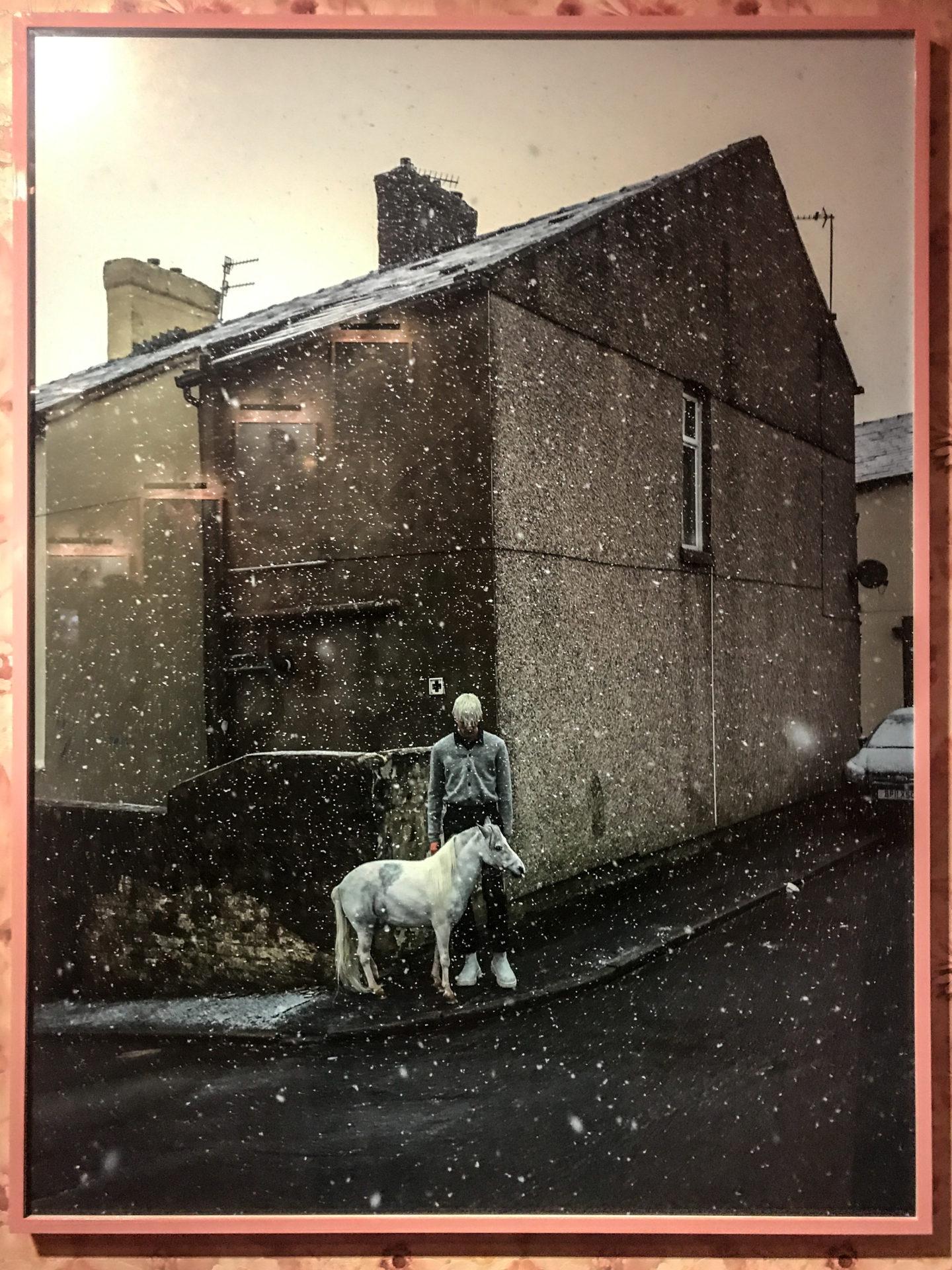 Tim Walker photography horse